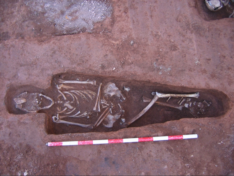 Foto de una excavación de planta antropomórfica