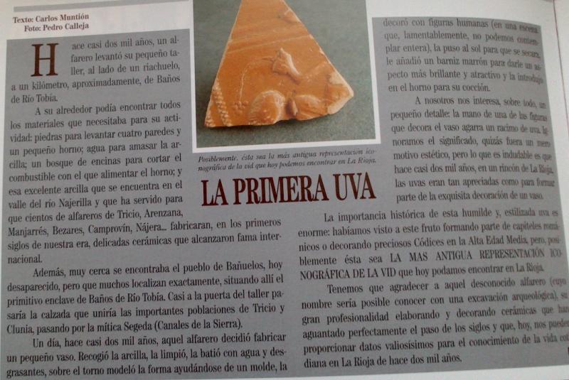 """Artículo de Carlos Muntión sobre el fragmento de vaso de """"terra sigillata"""" hispánica"""